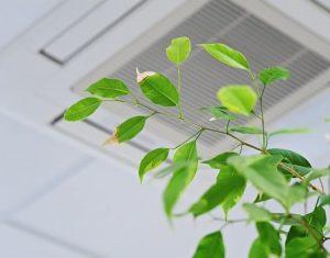 Hälsa och inomhusmiljö attefallshus