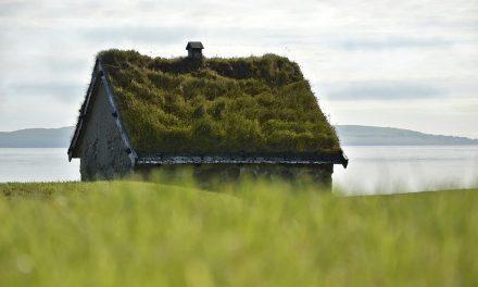 Material till taket för ett attefallshus – Vad skall man välja?